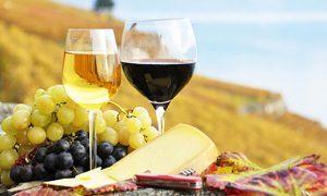 Dégustation vin et mets